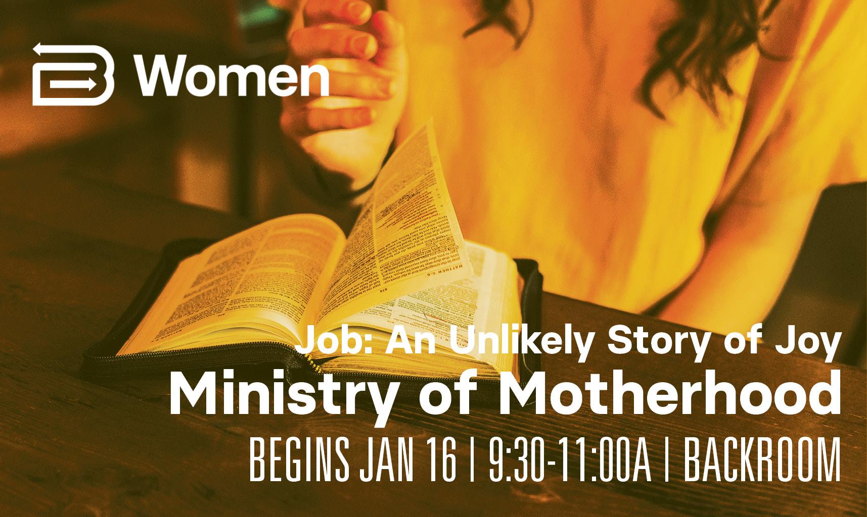 Ministry of Motherhood_Job image